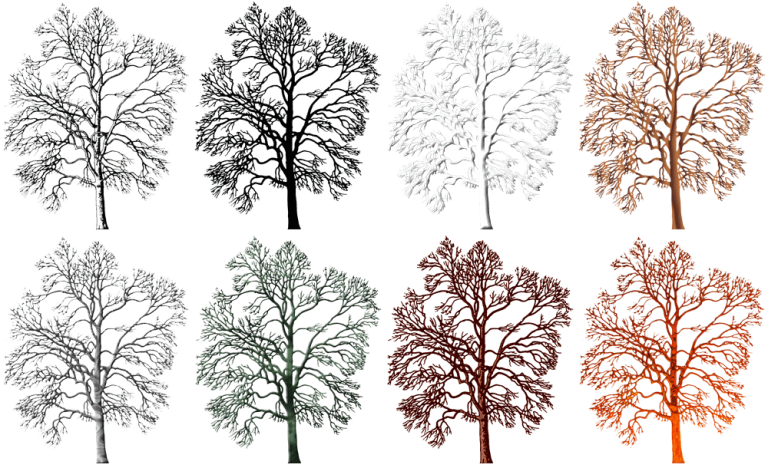 graphic winter trees 250x305px (x8) plans club premium
